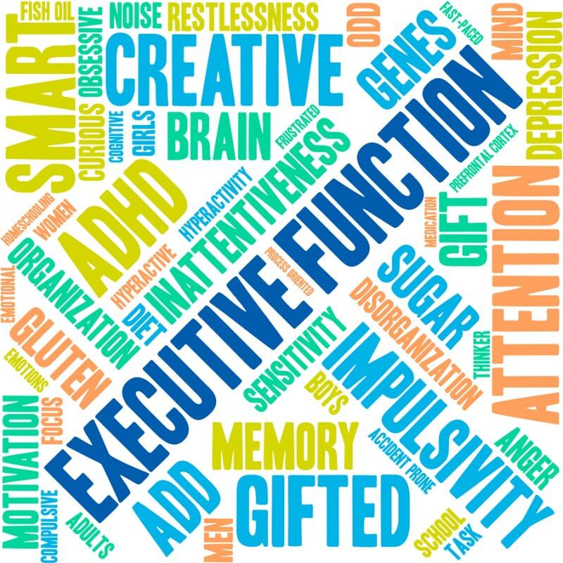Executive function: what is it, and how do we support it in those with  autism? Part I - Autism Awareness